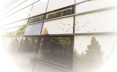 image of outside building with lots of windows