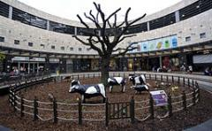 Image of Concrete cows at CMK - Image taken from Wikimedia and authors own work. This file is licensed under the Creative Commons Attribution-Share Alike license.